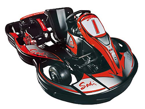 300cc kart for experienced drivers